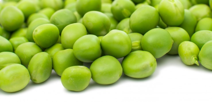 i piselli sono un'ottima fonte di proteine vegetali